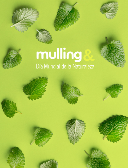 Made In Mulling 11